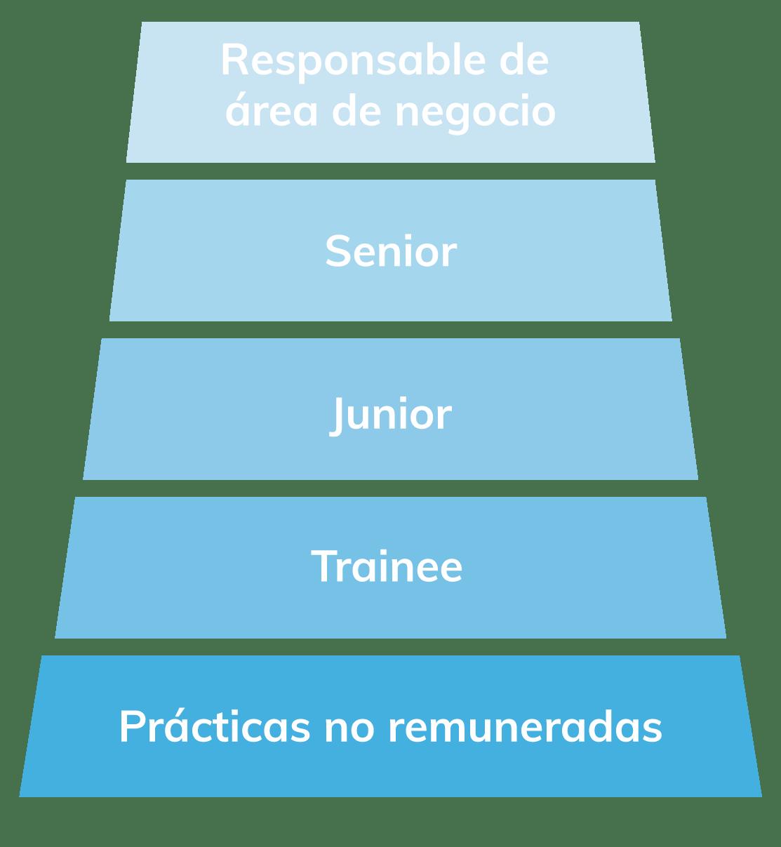 Bilnea pirámide de puestos